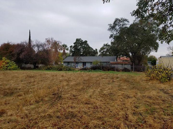 Back field looking towardsa house; late fall of 2017
