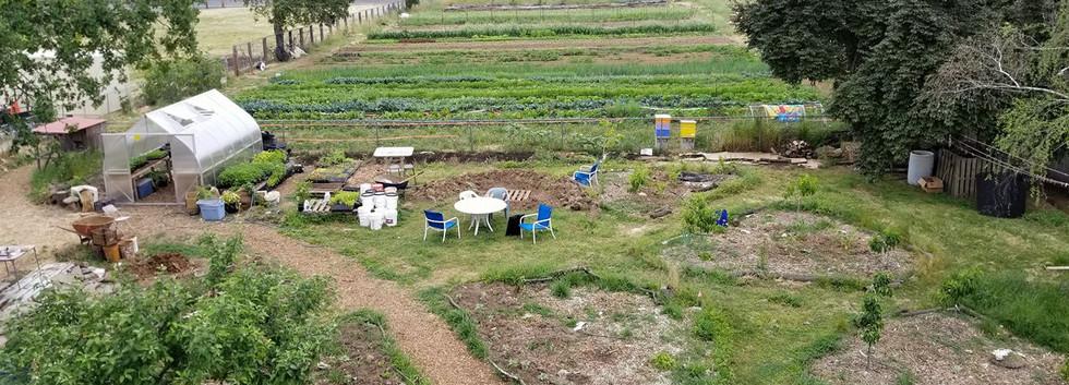 Farm from roof.jpg