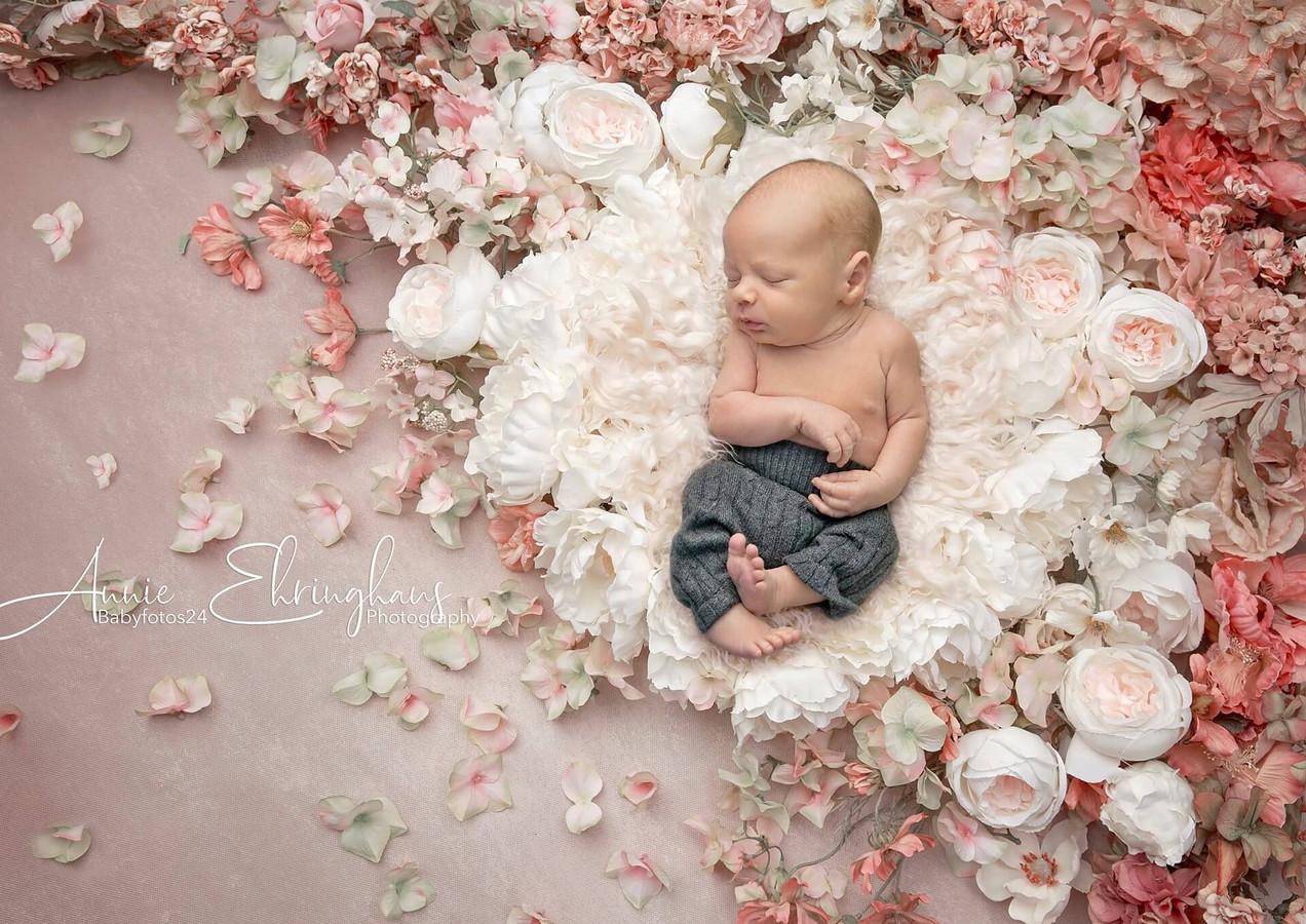 Babyfotos24