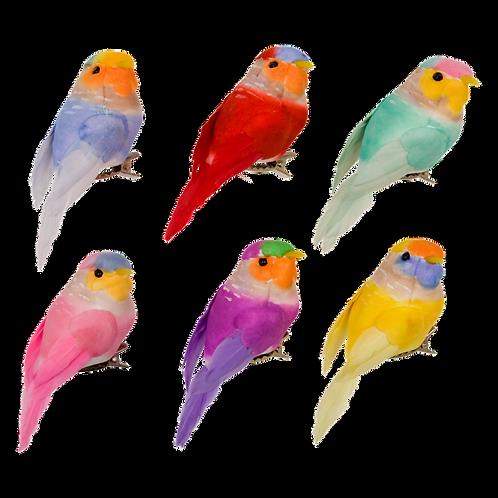 Oiseau à clipser