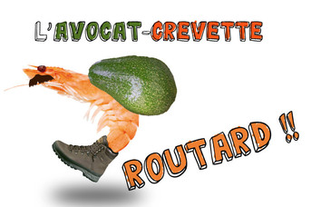 "ON S'EN FOOD ! Série ""avocat-crevette"" #1.2"