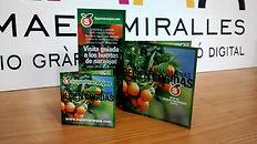 Imprenta Miralles Vila-real flyers