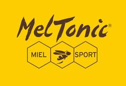 Logo_MELTONIC_JAUNE