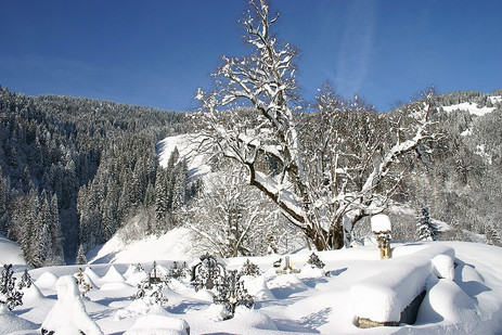 Winter-Bild-009.jpg