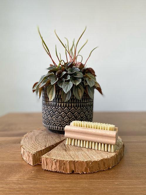 Brosse à ongle en agave