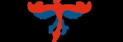 Logo LFRT.png