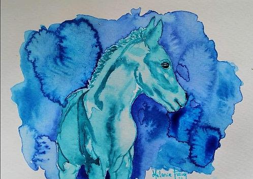 Portrait de votre Cheval Parrainé Jazabah Bleu