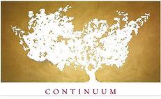 Continuum.jpg