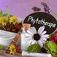 phytotherapie.jpg
