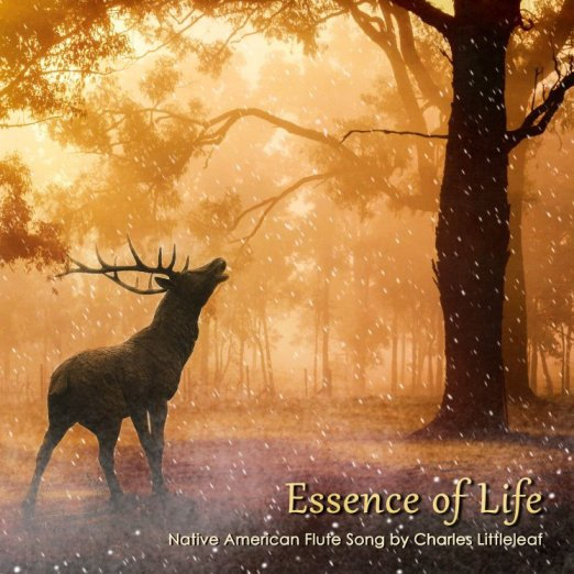 "New Littleleaf CD Single ""Essence of Life', Native American Flute Music"