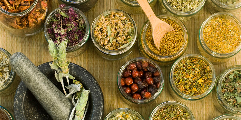 Introduction to herbal medicine making - 6 classes (1)