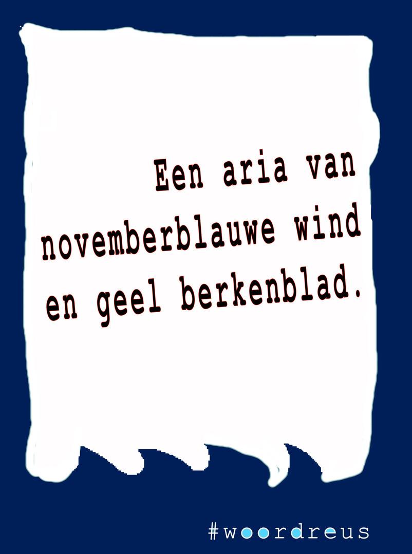 haiku aria #woordreus .jpg