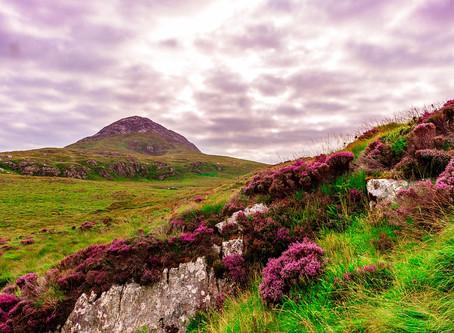 La nature irlandaise