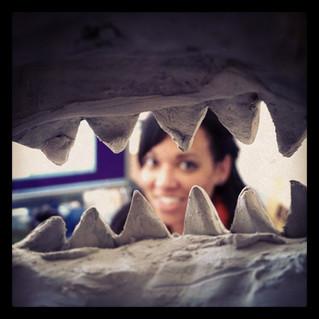 Monday Morning Shark Attack