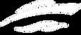 hireboatperth-logo-blue-1_edited_edited.