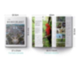 Revista_Wanderlust_2x-100.jpg