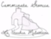 Sono raffigurate la torre medievale di Palleroso e la Rocca ariostesca di Castelnuovo di Garfagnana collegate da una strada rappresentate la Vecchia Mulattiera che fino agli anni Cinquanta collegava la frazione di Palleroso con ill suo capoluogo Castelnuovo.