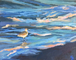 'Where There's a Willet, There's a Wave'