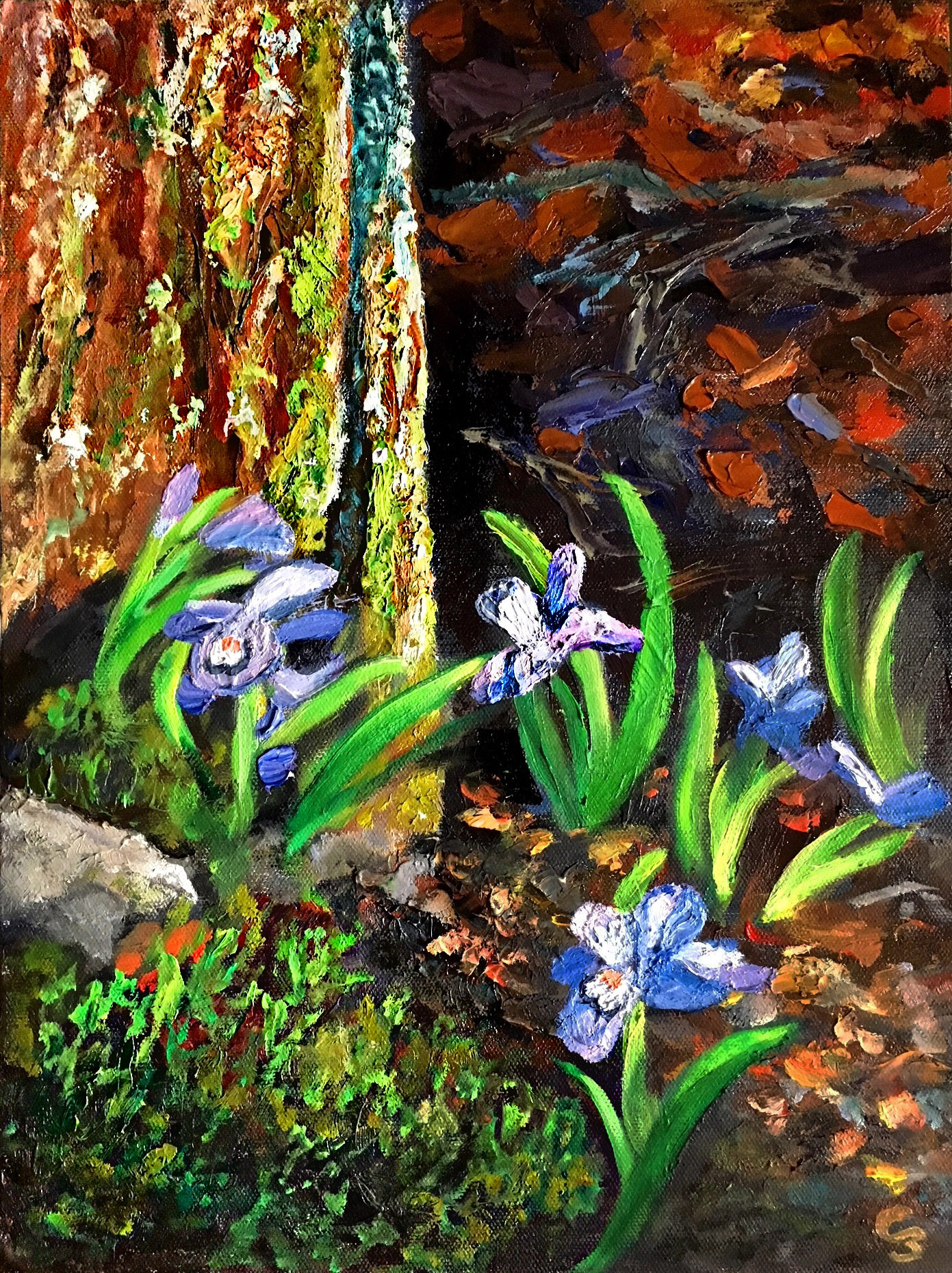 'Luck of the Iris'