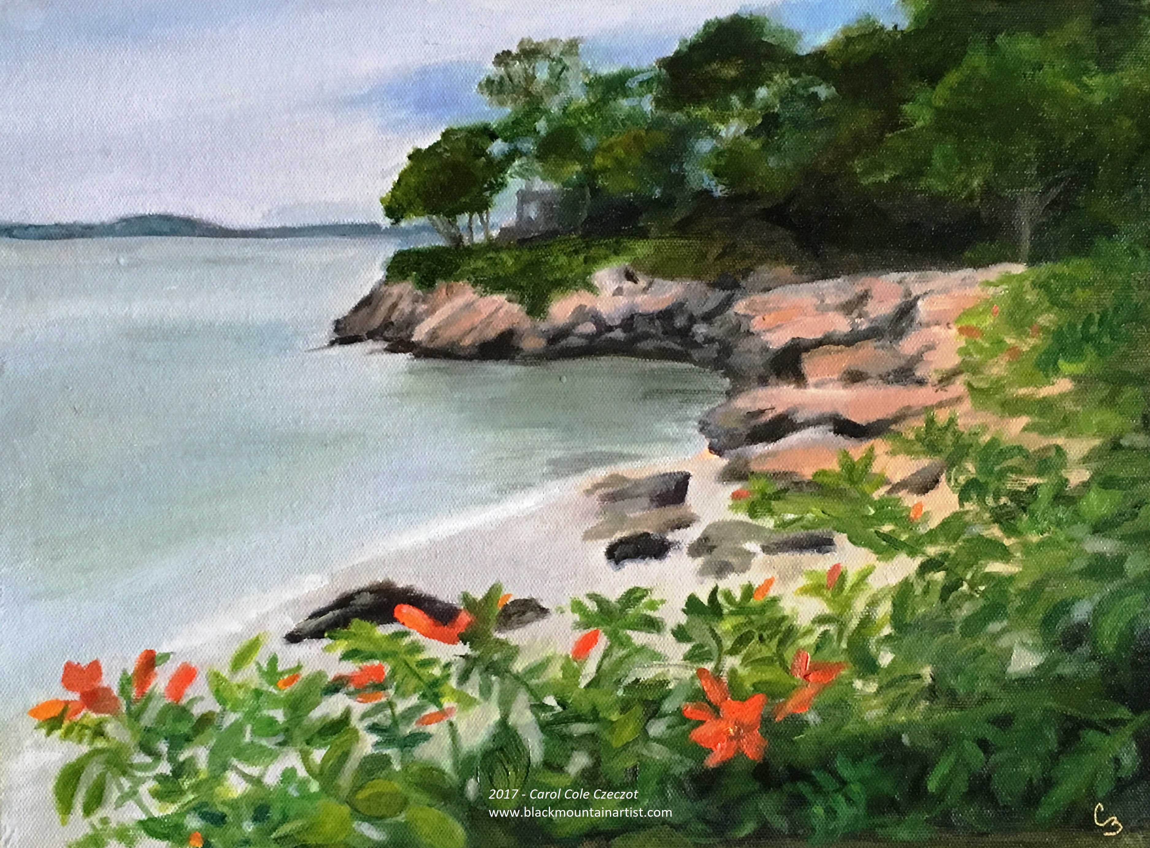 'Cape Ann Cove'