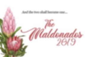 Maldonados Screen.jpg