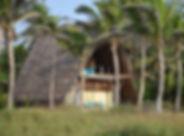 BOB_2643.jpg