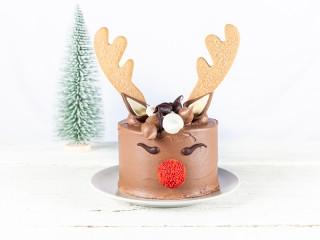 "5"" Red Nose Reindeer cake"