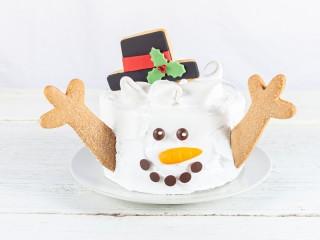 Mr Frosty Cake
