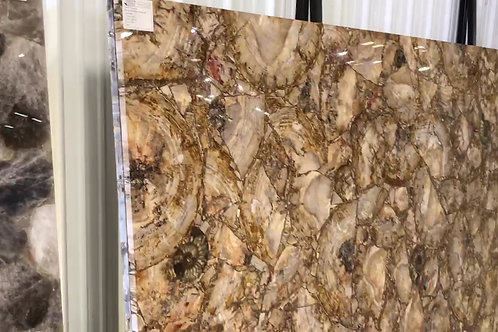 Semi-Precious Brown Petrified Wood with Amonite