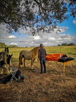 Boeddhistische Tantra tussen paarden