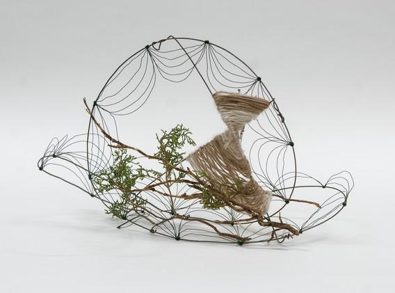 3D Design, Line/Wire Project