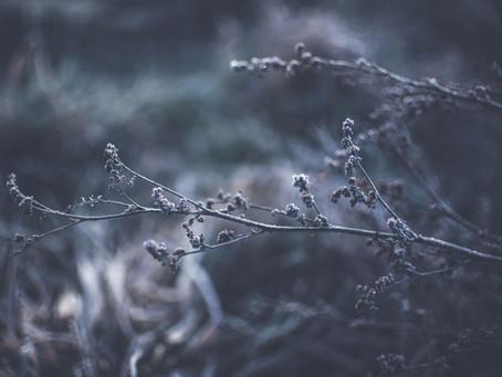 O inverno e a COVID-19