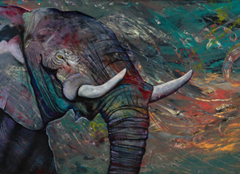 The Elephant - Print