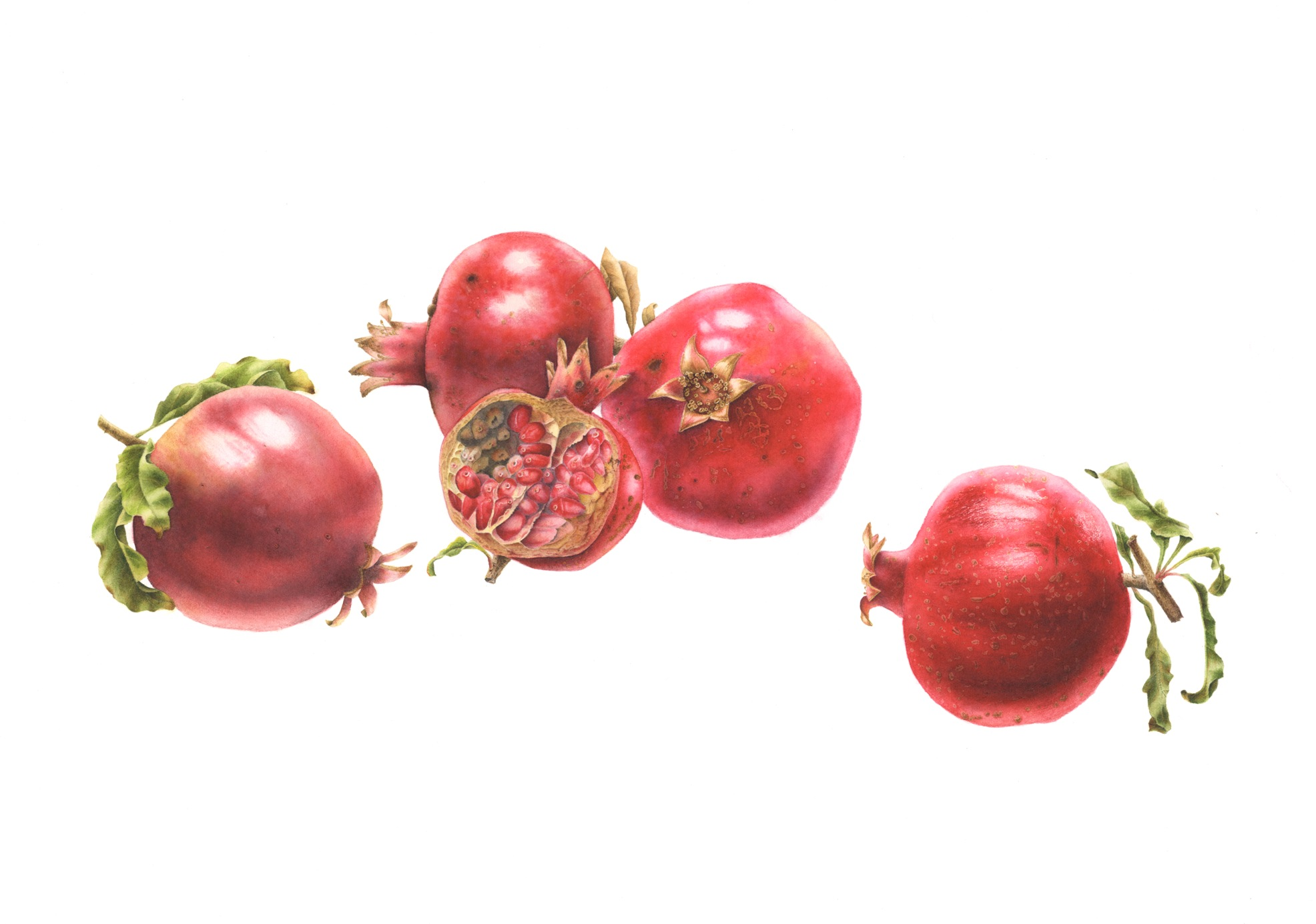 Pomegranate Group