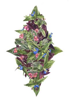 Tradescantia bouquet