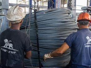 מפעל הרשת