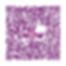 PAYNOW QR Code (New Century).png