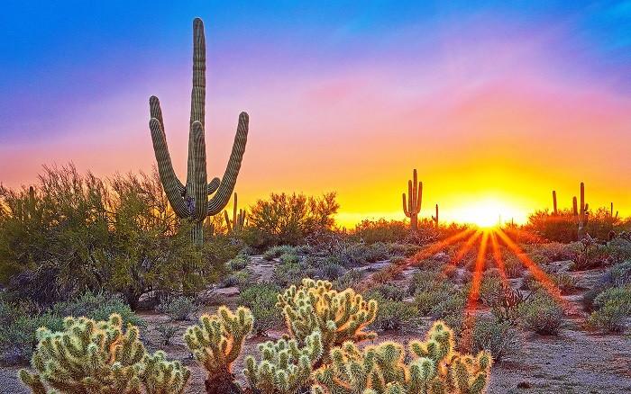 AZ Sunrise.jpg