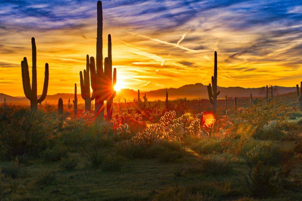 Arizona-desert-1028x685.jpg