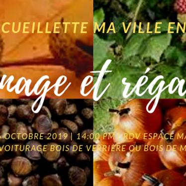 """Sortie cueillette """"Glanage et Régalade"""""""