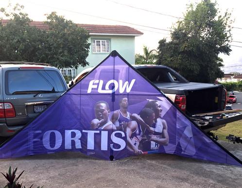 Custom Ad-Kite - Flow.Fortis
