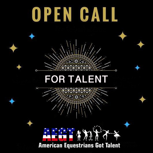 AEGT 2019 : Talent Search