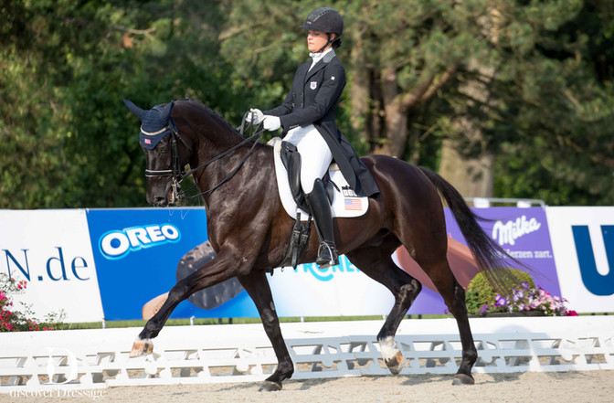 Dressage European Young Rider Tour Seasons Young Athletes