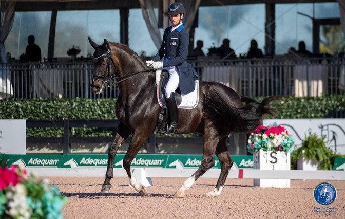 Discover Dressage USEF/USDF Emerging Athletes Announced for 2021
