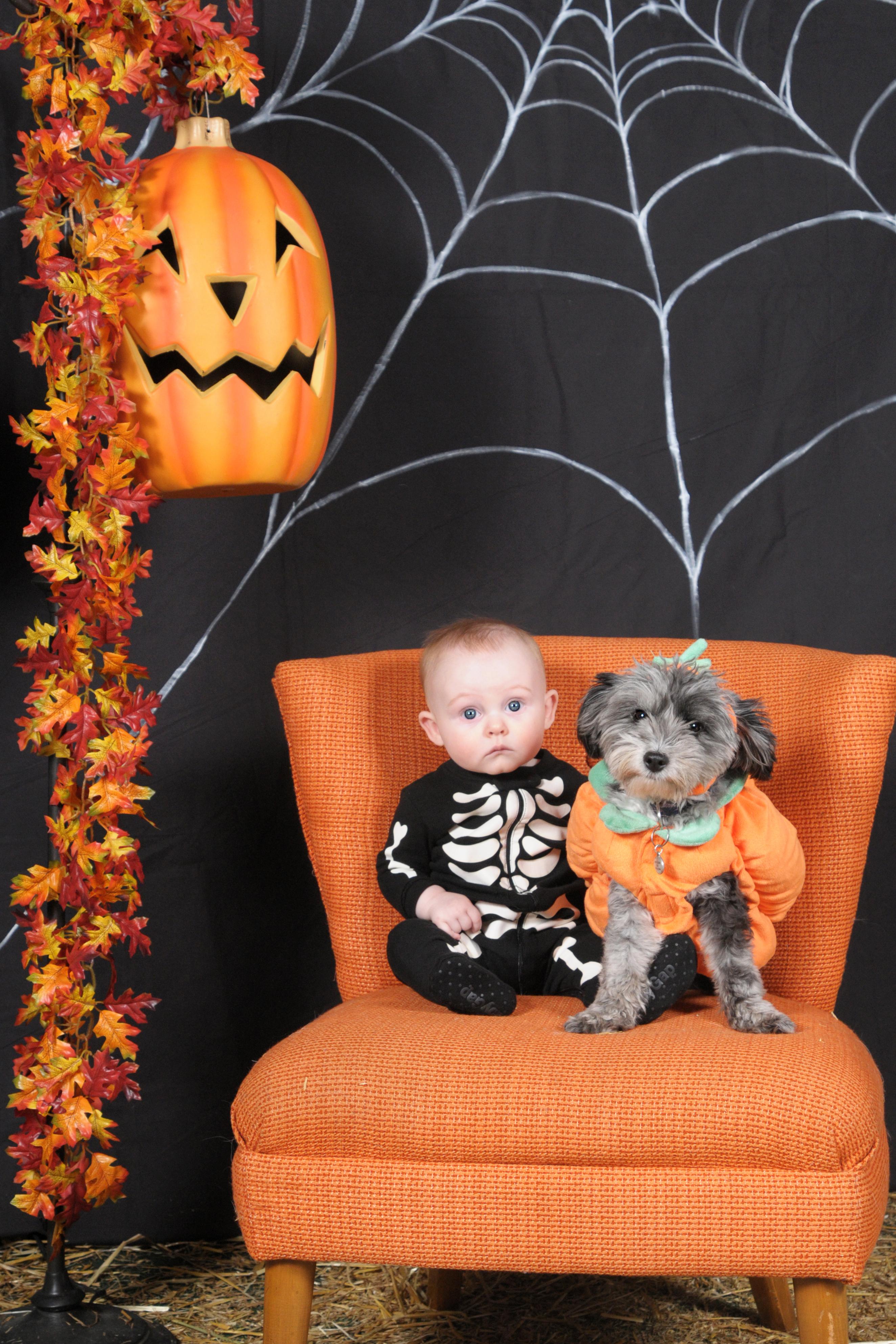 Dogaholic's Halloween 2013 213
