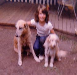 Mrs. Martin's dogs.