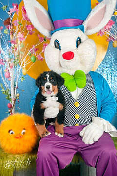 george_5x7_easter_2019_fetchPortraits.jp