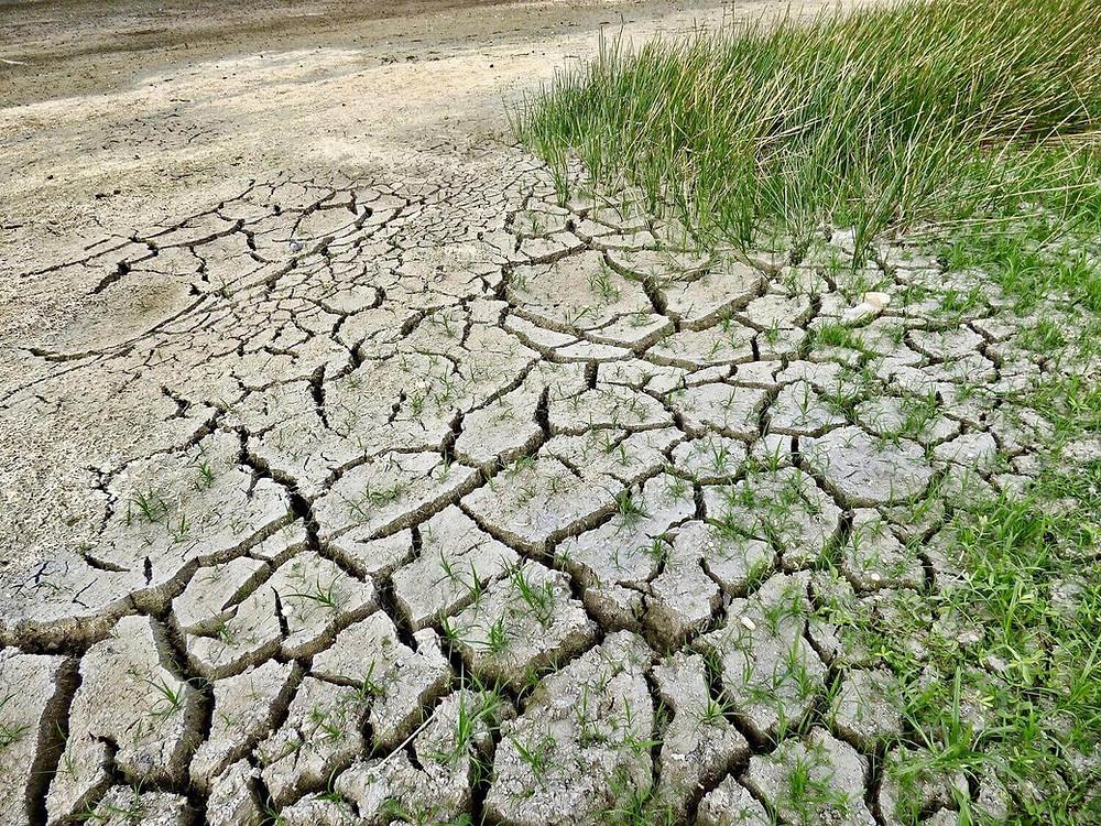 unhealthy-soil-cracked-earth