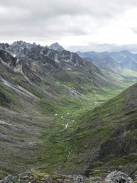 Historic Win in Yukon First Nations' Fight to Protect the Peel Watershed
