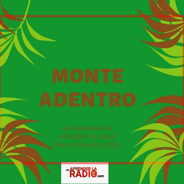 monte-adentro-aprender-la-radio